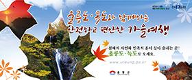 [AD]울릉군 가을관광