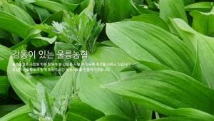 [AD]울릉농협