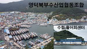 [AD]영덕북부수협