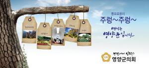 [AD]영양군의회