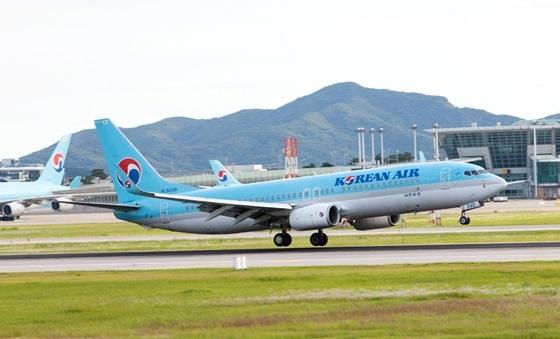 대한항공 B737-800 항공기 (사진 = 대한항공)