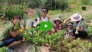 [NSPTV]순천시, 제2회 순천 도시농업 어울림 한마당 행사 개최