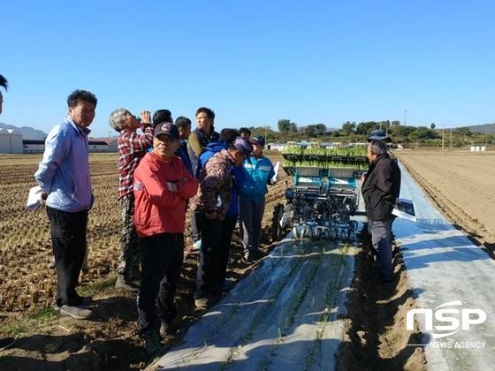 강진군이 지난 10월 군동 시목마을에서 가진 양파 기계작업 시연회. (사진 = 강진군)