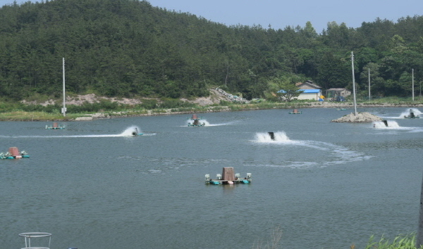 신안군 새우양식장 (사진 = 자료사진)