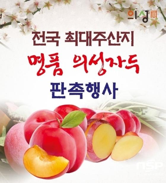 (사진 = 경북 의성군)