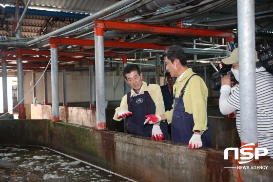 서재원 의장(왼쪽)이 이강덕 포항시장과 폭염피해 양식장을 방문해 피해를 확인하고 있다. (사진 = NSP통신 D/B)
