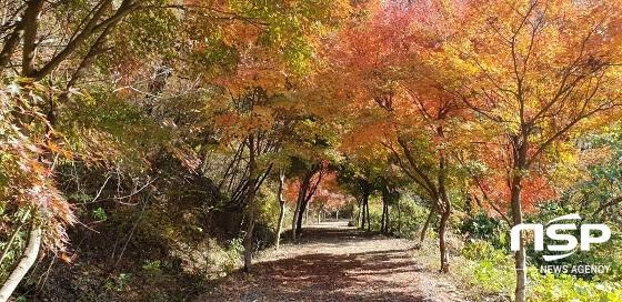 완주군 고산 자연휴양림
