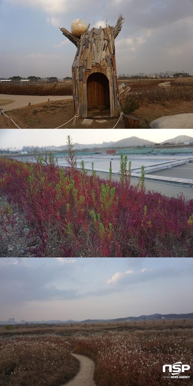 위로부터 갯골생태공원 내 조형물, 칠면초, 갈대숲 (사진 = 나수완 기자)