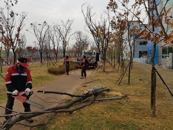 권선구 도시녹지민원 기동처리반이 관내 녹지에서 고사목을 제거하고 있다. (사진 = 권선구)