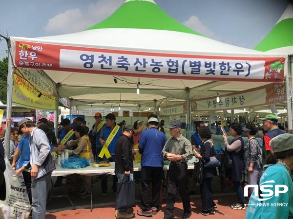 영천시와 영천축협이 영천별빛한우를 홍보하기 위해 15일 대구 두류공원에서 열리는 대구낭만 한우 숯불구이축제에 참여하고 있다. (사진 = 영천시)