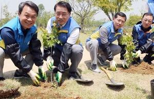 [포토][업계동향] 신한지주, 임직원 모여 단풍나무원 조성활동 실시