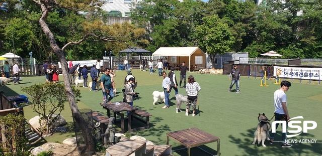 이삭애견훈련소에서 진행된 반려견과 반려인의 매너교육. (사진 = 김종식 기자)