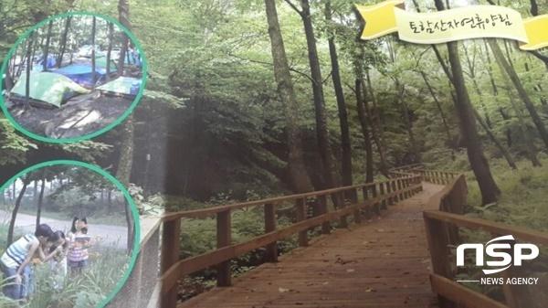 토함산 자연휴양림. (사진 = 블로거 경주지킴이)