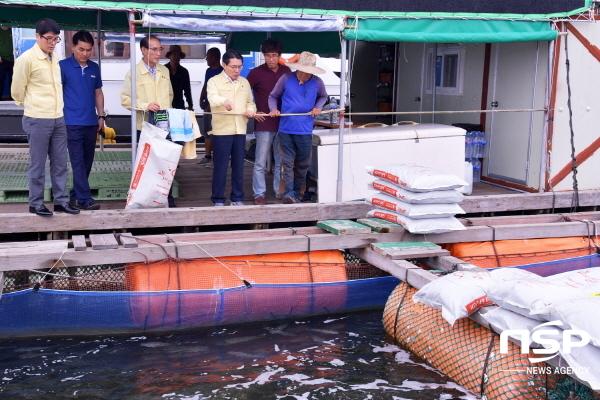 권오봉 여수시장이 돌산읍 우두리 해상 가두리에서 적조 피해상황을 살피고 있다. (사진 = 여수시)