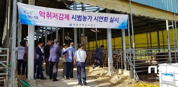 장흥군이 최근 개최한 유기농 액체비료를 이용한 악취저감제 시연회. (사진 = 장흥군)
