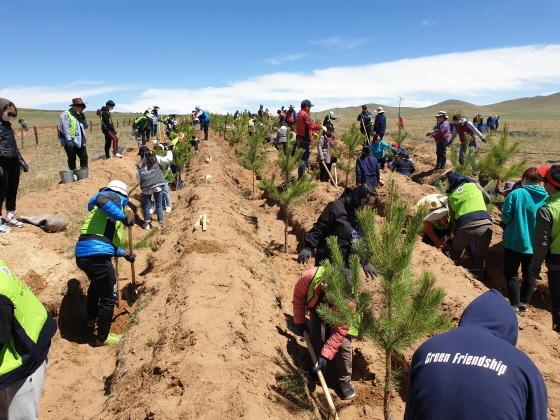 [포토]수원시, 사막화 방지 몽골에 나무 10만그루 식재