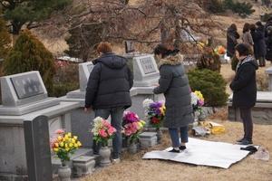 [포토][설 풍경] 서울공원묘지 성묘객들, 조상의 넋 기려