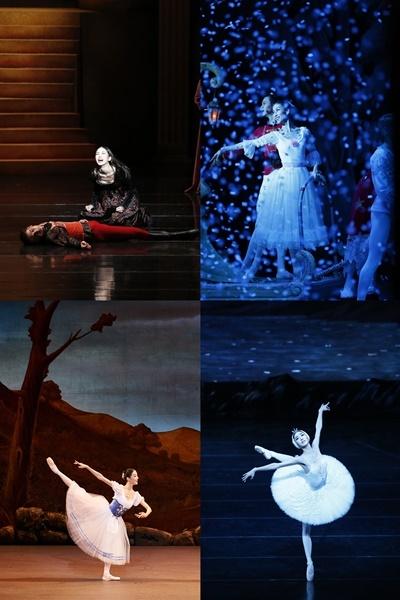 ▲로미오와 줄리엣, 호두까기 인형, 백조의 호수, 지젤(사진 위 왼쪽부터 시계 방향 순)에서 공연 중인 최지원