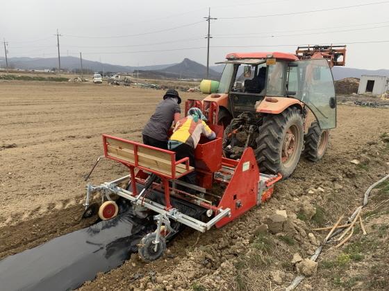 농가에서 감자파종기를 사용하고 있는 모습. (사진 = 용인시)