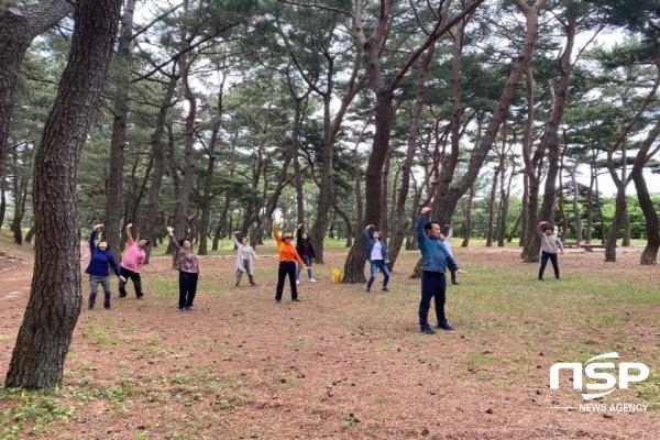 포항지진트라우마센터는 코로나19 확산으로 인해 중단됐던 신체기반 회복 프로그램 Healing Dance 를 22일부터 운영 재개했다 (사진 = 포항시)