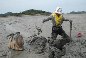 [NSP PHOTO]무안군, 무안갯벌낙지 맨손어업 홍보관 설치