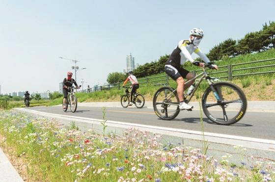 양천구 안양천 제방 자전거 도로를 달리는 주민들 (사진 = 양천구)