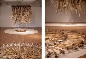 [NSP PHOTO]갤러리비오톱, 강술생 개인전 '씨앗의 희망' 통해 코로나 시대 생태미술 가능성 증명