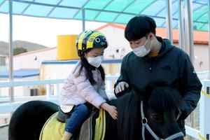 [NSP PHOTO]영천시, 운주산승마조련센터 '말문화체험관' 개장