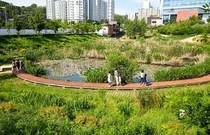 [NSP PHOTO]서울시 양천구, 도심 속 습지 생태교육 프로그램 진행